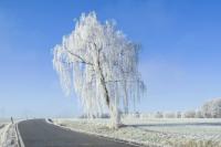 На дорогах возможен снежный накат и гололед.