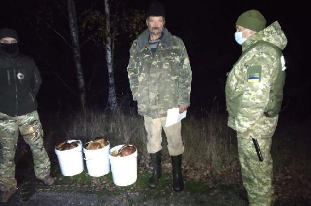 Из зоны ЧАЭС пытались вывезти 40 килограммов грибов.