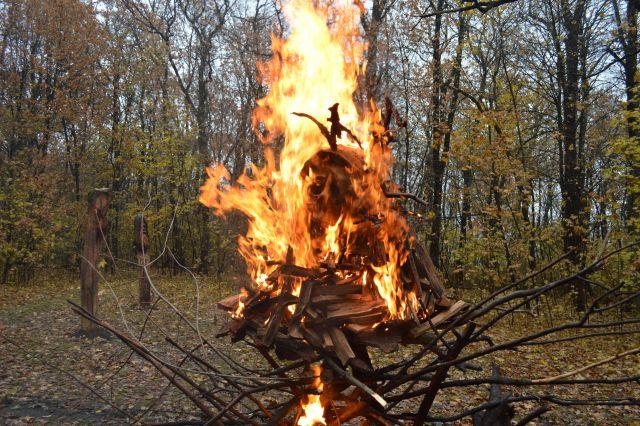 Автор сделал из дерева скульптуру, изображающую коронавирус, а затем сжег ее.