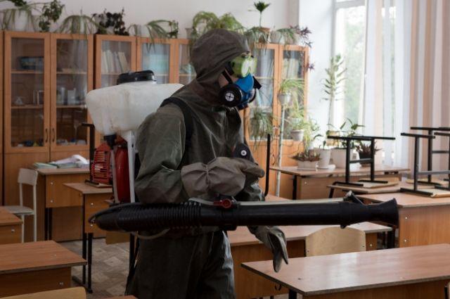 Около 60% школьников в Новосибирской области продолжат обучение в обычном режиме.