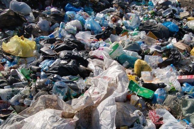 За вывоз мусора в Новосибирской области заплатят миллиарды.