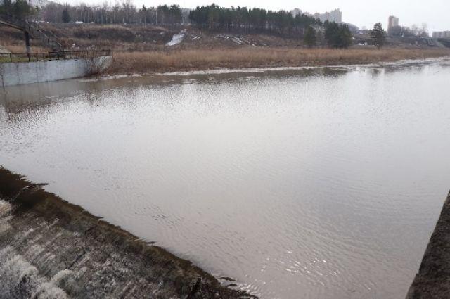 Кемеровчане сообщают, что утки отказываются плавать в токсичной воде.