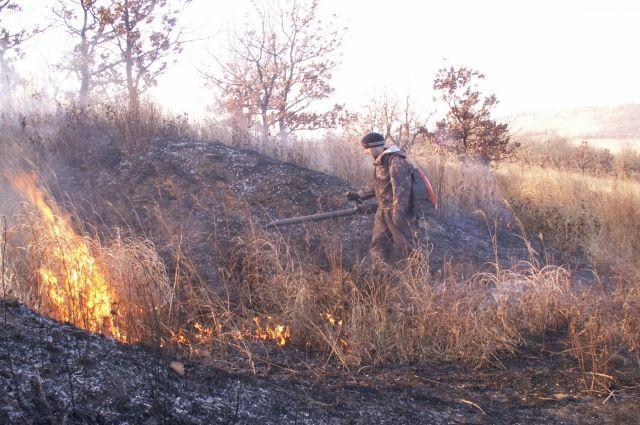 В Новосибирской области закупят технику для тушения лесных пожаров.