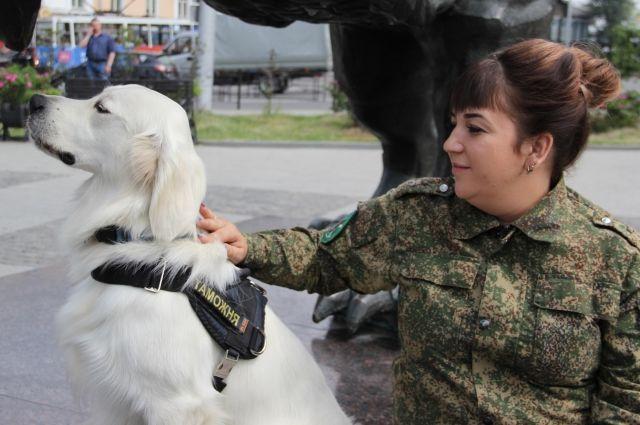 В штате кинологического отдела Иркутской таможни 10 собак.