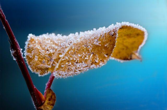 К концу недели в Башкирию придёт настоящая зима