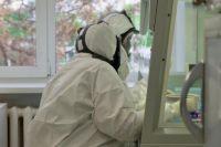 новое оборудование привезли в ковидные лаборатории, поведомственные Минздраву Новосибирской области.