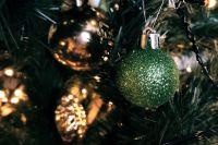 В Ижевске началась установка первой новогодней елки