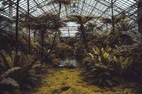 Ботанический сад передадут университету в безвозмездное пользование.