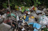 Древний уникальный курган в Оренбуржье «зарастает» мусором.