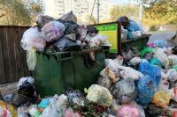 В Оренбурге из-за ремонта улицы Туркестанской мусоровозы не могут подъехать к контейнерным площадкам.