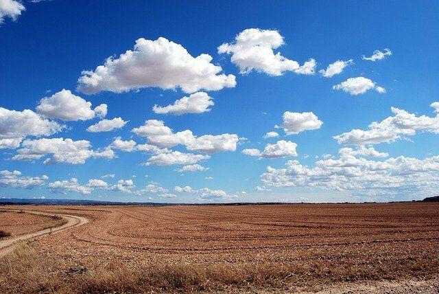 В Тюменской области развивают сельскохозяйственное производство