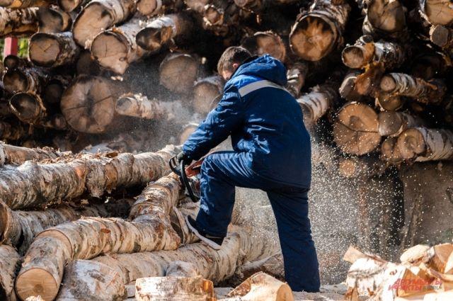 Жители Богучанского района заметили сильный лесной пожар