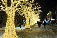 Деревья уже украсили улицу  Дзержинского.