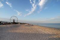 У берегов курортной Кирилловки зафиксировали массовый мор рыбы