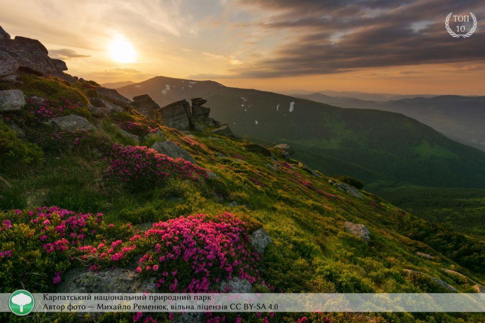 На этой фотографии мы видим красоты Карпат - это Карпатский национальный природный парк.Снимок сделал Михаил Ременюк.