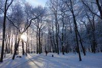 По данным метеорологов, днем в Новосибирске ожидается до -8 градусов, ночью — до -10. В отдельных районах области ночная температура воздуха опустится до 15 градусов мороза.