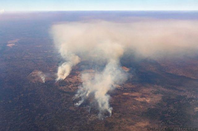 В Сибири в этом году пожары полыхали на площади 25 млн. га.