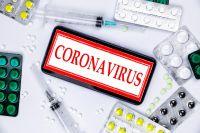 В Новосибирске начали выдавать бесплатные лекарства для пациентов, лечащихся от коронавируса на дому. Как объяснили в минздраве региона, эти препараты врачи смогут назначать пациентам без лабораторного подтверждения диагноза COVID-19.