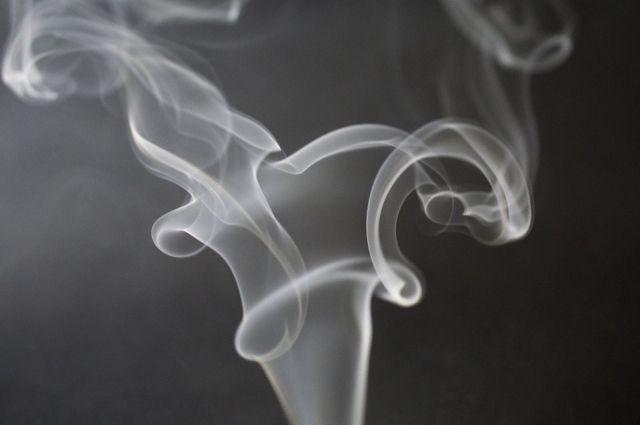 В любом табачном изделии содержится никотин – вещество, которое становится причиной формирования зависимости от табака и приводит к постоянному увеличению потребления продукции.
