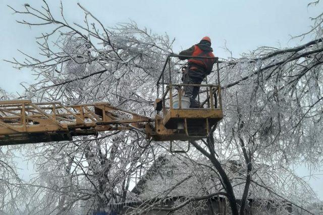 Деревья падали под весом ледяных крон.