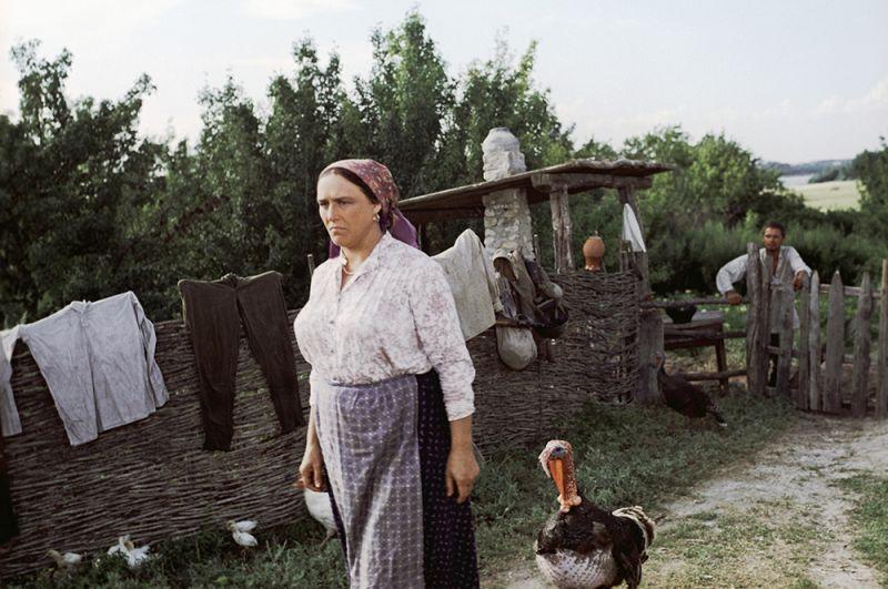 Актриса Нонна Мордюкова в роли Натальи Степановны в художественном фильме «Они сражались за Родину», 1975 год.