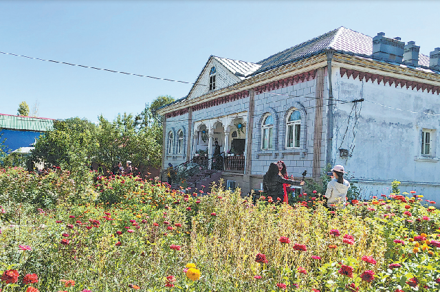 Цветущие розы в саду Халитан.
