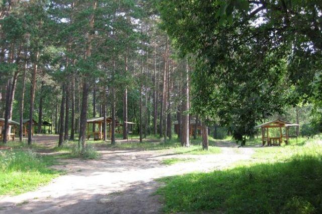 Депутаты Законодательного собрания Новосибирской области обратились к мэру Анатолию Локтю с просьбой не допустить строительства объектов на месте зеленых насаждений в Заельцовском парке Новосибирска.