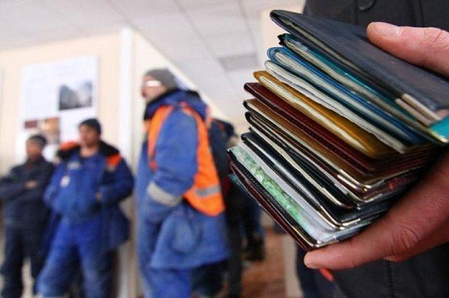 На Камчатке завершено следствие о незаконной легализации иностранцев