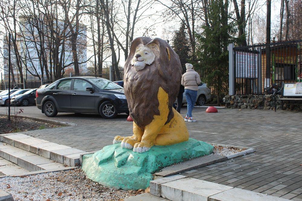 Лев Симба около зоопарка.