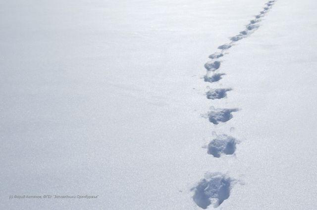 Погода в Хабаровском крае и ЕАО на 3 декабря