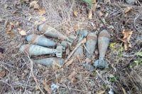 В Донецкой области пограничники обнаружили схрон боеприпасов.