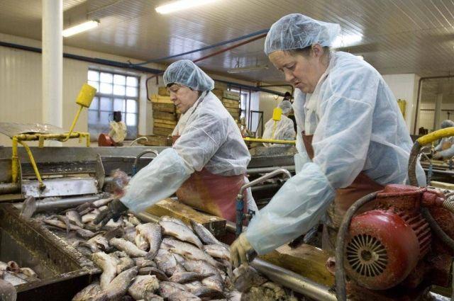 Продукция из рыбы очень популярна у югорчан и гостей округа