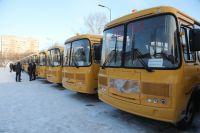 21 тыс. школьников края доставляют в учебные заведения на автобусах.