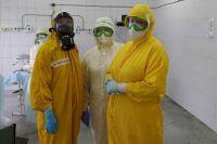 По состоянию на 3 декабря в Кузбассе выявлено 172 новых случая заболевания коронавирусной инфекцией.