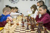 Раньше у шахматистов не было своего помещения.