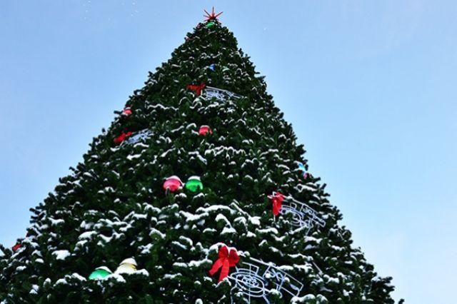 В районах Петропавловска установили 12 новогодних ёлок