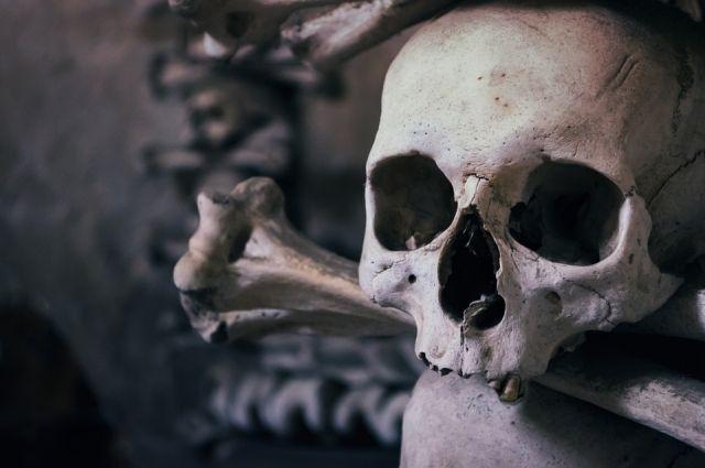 Житель Надыма в подвале дома нашел скелет человека