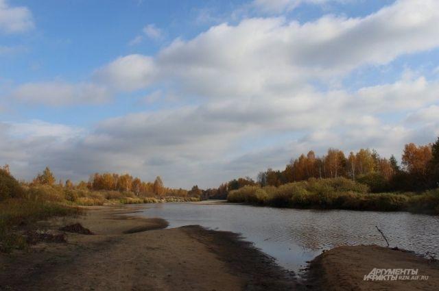 Жители Клепиковского района боятся, что скоро их любимая Пра может превратиться в ручей...