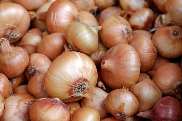 Закупочная цена на лук снизилась до 9 руб. за кг.