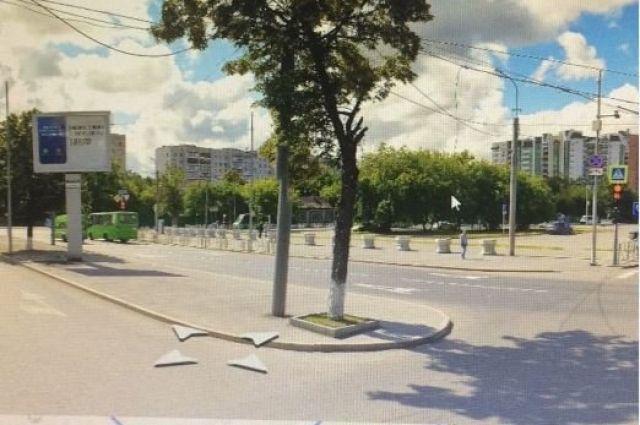 В Тюмени разыскивают вандалов, срубивших в центре города 50-летнюю липу