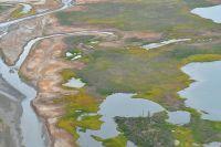 Ученые обследовали водные и биологические ресурсы, вечномерзлые грунты.
