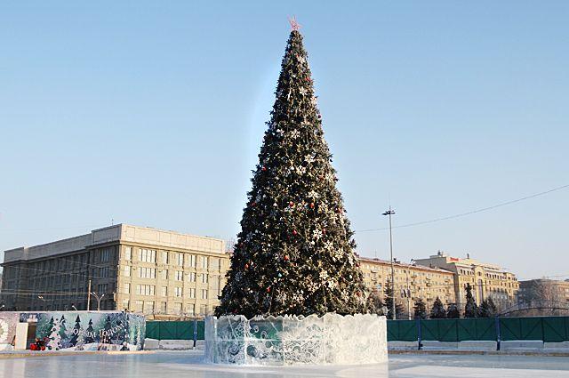 Рабочие начали устанавливать главную городскую елку перед Новосибирским театром оперы и балета.