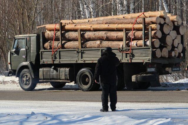 Вообще-то леса в стране достаточно, но поднять цены проще, чем нарастить производство.