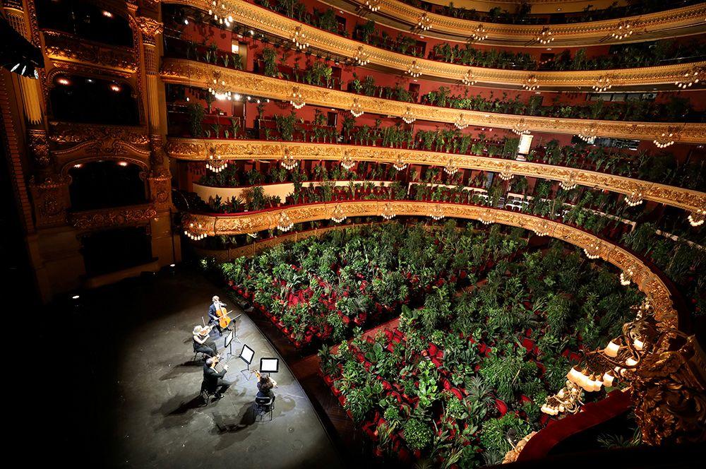 Барселонский оперный театр Gran Teatre del Liceu устроил концерт для растений, чтобы привлечь внимание к проблеме отсутствия посетителей во время локдауна.