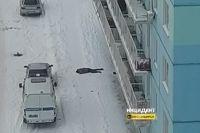 Инцидент произошел на съемной квартире