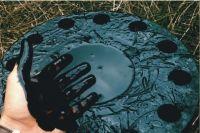 В Оренбуржье нефтяники заплатили 60 млн за разлив нефти в лесу.