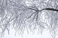 Зима вступает в свои права.