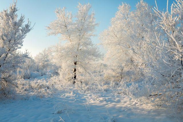 В некоторых территориях региона температура опустится до -31 градуса.
