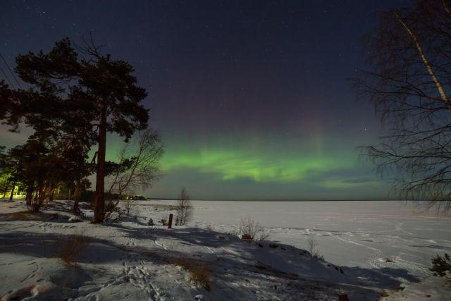 Чем севернее забираешься - тем больше шансов увидеть настоящее полярное сияние