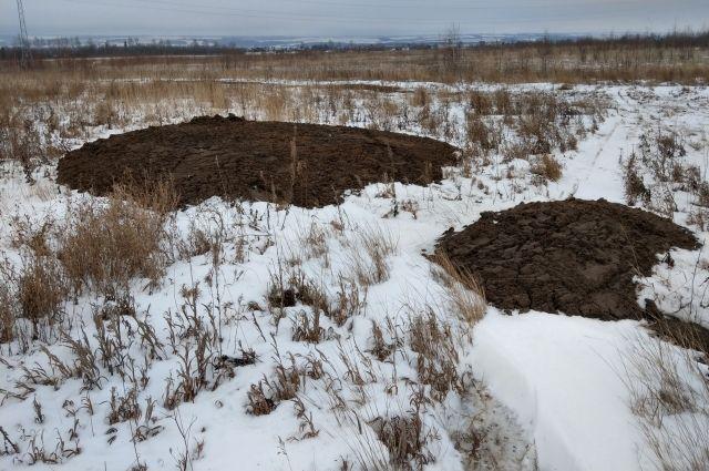 Птицефабрика загрязнила плодородный слой почвы